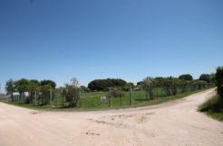 Terreno agricolo di 2.650 mq